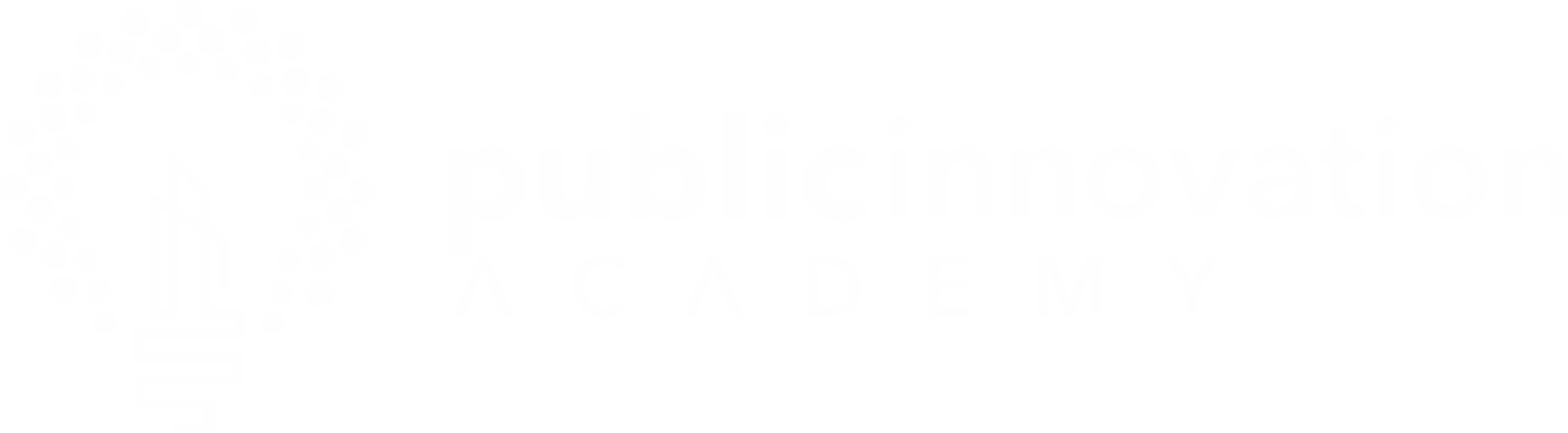 Public Innovation Academy